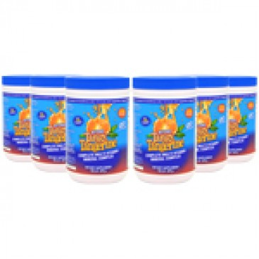Beyond Tangy Tangerine (6 Pack)