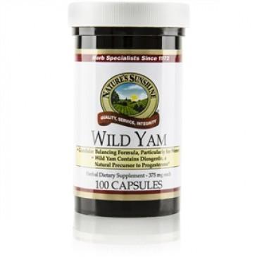 Wild Yam (100 caps)