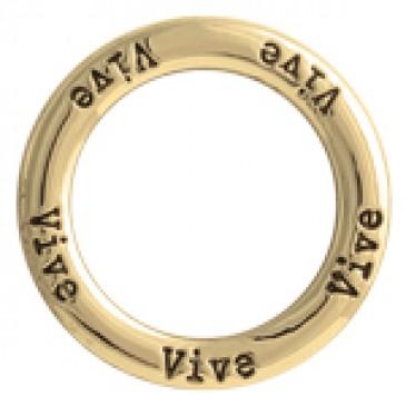 Vive Large Gold Frame