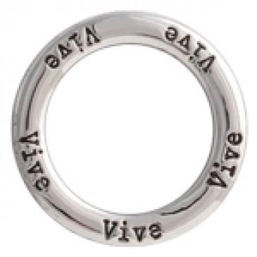 Vive Large Silver Frame