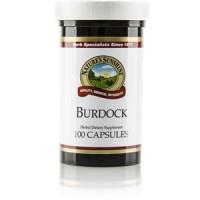 Burdock (100 caps)